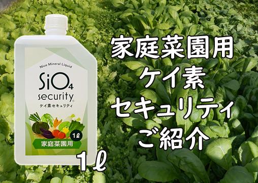 家庭菜園用ケイ素セキュリティご紹介